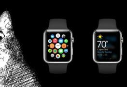 Apple Watch Kommentar