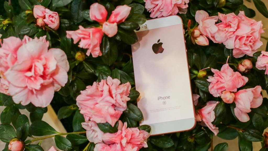 Apple iPhone SE CNET