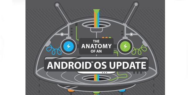 Android-Anatomie