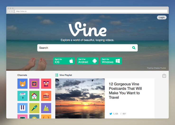 vine web update