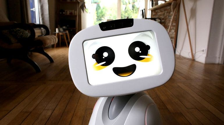 buddy-family-companion-robot-2