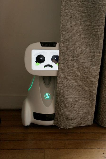 buddy-family-companion-robot-3