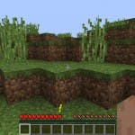 Screenshot: Minecraft