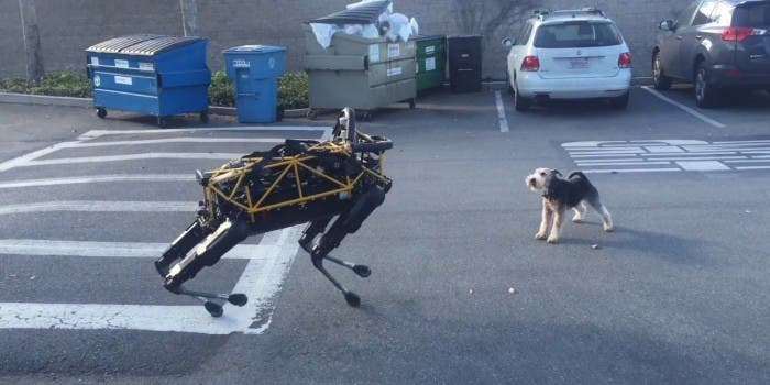 Boston Dynamics: Hund 1 – Roboter 0