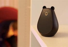 bearbot-smart-home