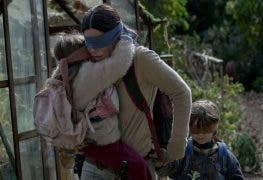 Darwin Award incoming: Netflix warnt vor der Bird Box Challenge
